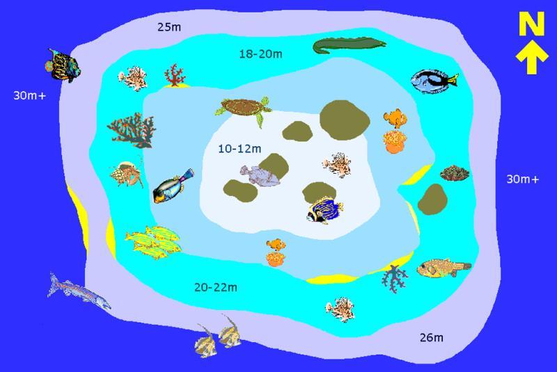 Site Map of Anemone Garden Dive Site, Maldives