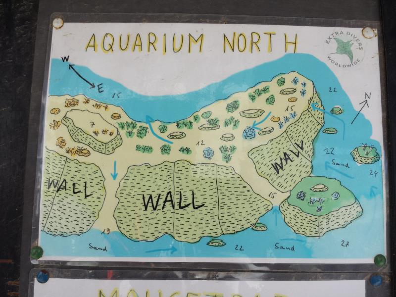 Site Map of Aquarium Dive Site, Oman