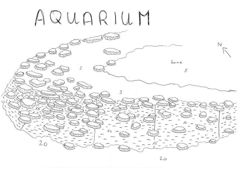 Site Map of Aquarium Dive Site, Maldives