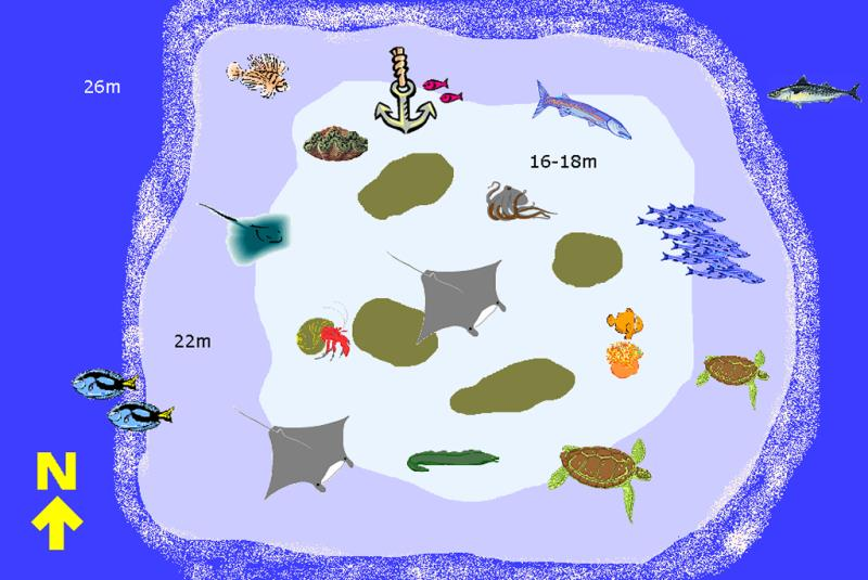 Site Map of Fhun Faru  Dive Site, Maldives