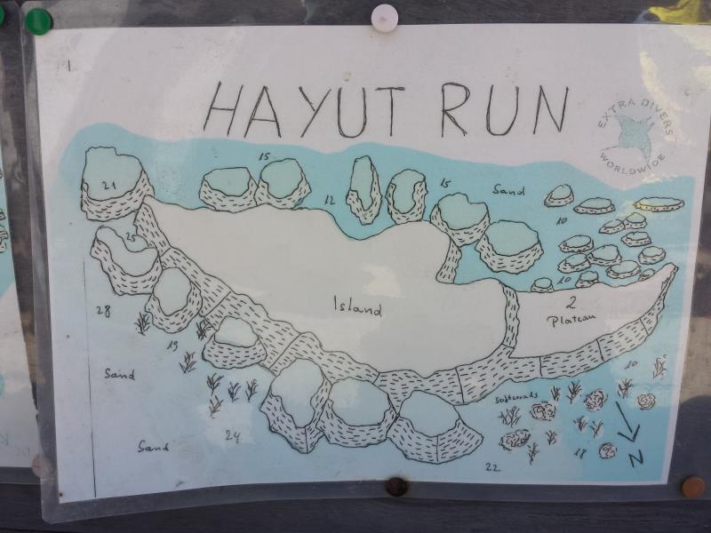 Site Map of Hayut Run Dive Site, Oman