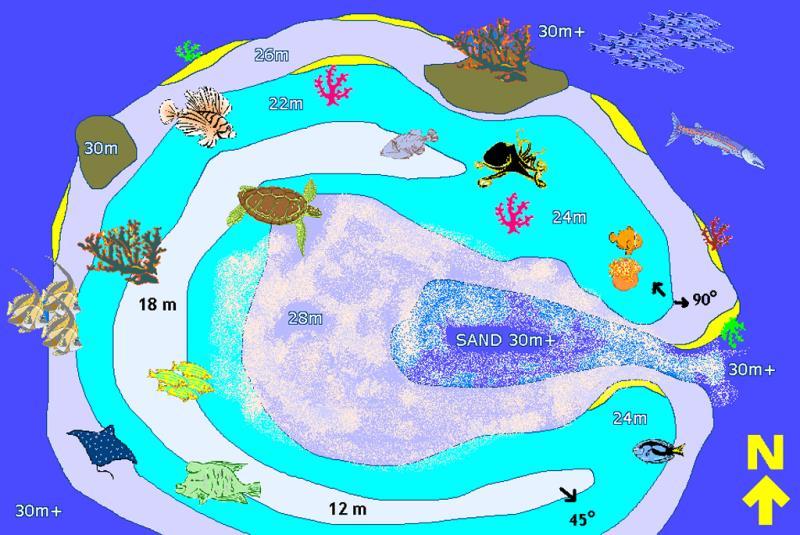 Site Map of Koba Thila Dive Site, Maldives