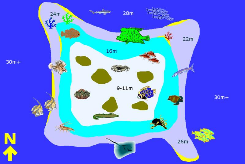Site Map of Maamaaduvari Thila Dive Site, Maldives
