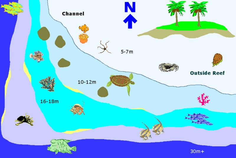 Site Map of Maamaaduvari West Dive Site, Maldives