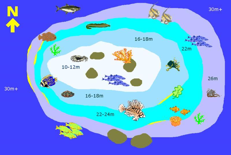 Site Map of Medu Thila Dive Site, Maldives