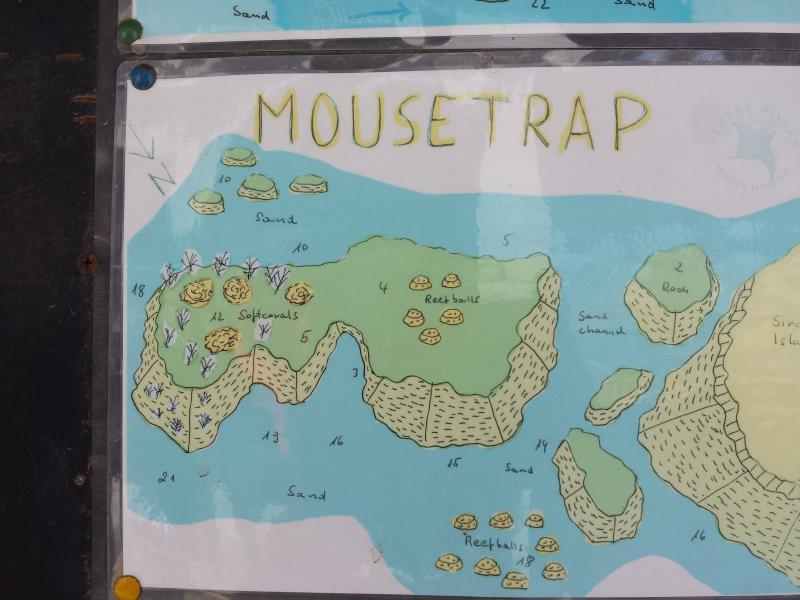 Site Map of Mouse Trap Dive Site, Oman