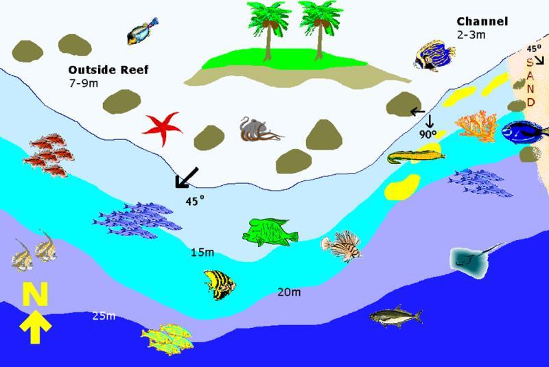Site Map of Olhugiri Kandu Dive Site, Maldives