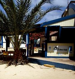 Orca Dive Club Caboverde