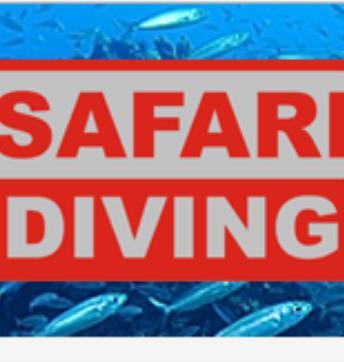 Safari Diving Lanzarote