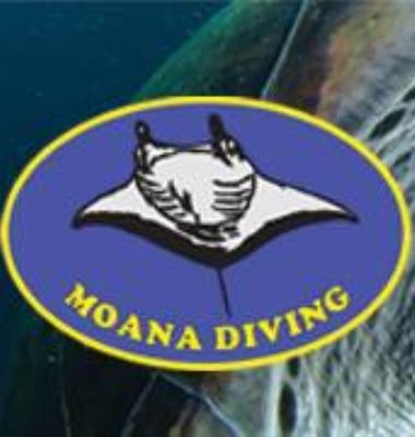 Moana Diving