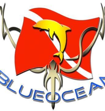 Blue Ocean Mergulho