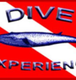 Dive Experience, Inc.