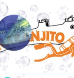 Naranjito Buceo