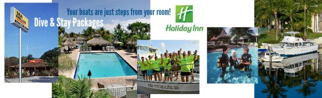Dive & Stay Hotel Packages!