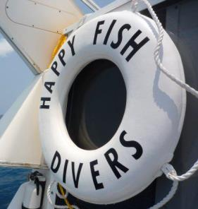 Happy Fish Divers