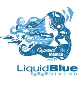 Liquid Blue Divers