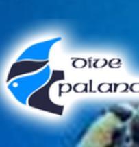 Dive Palancar