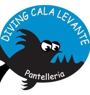 Diving Cala Levante Isola Di Pantelleria