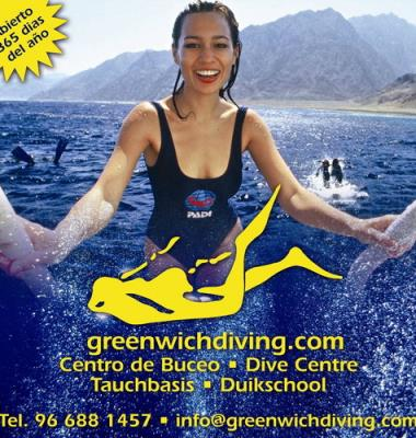 greenwichdiving.com