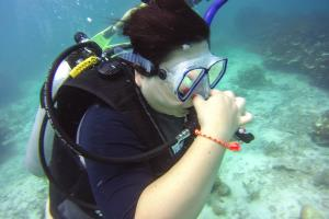 try diving Koh Samui