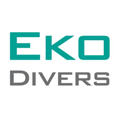Eko - Asia Pacific Holdings Pte Ltd