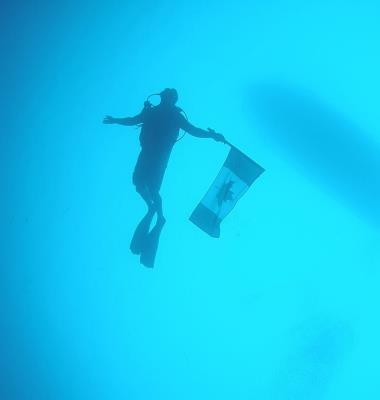 Diving Dynamics