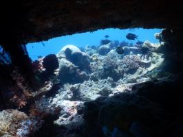Scuba Dive Site gili Trawangan :Bounty Wreck