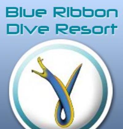 Blue Ribbon Divers
