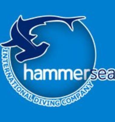 Hammer Sea