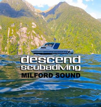 Descend Scuba Diving