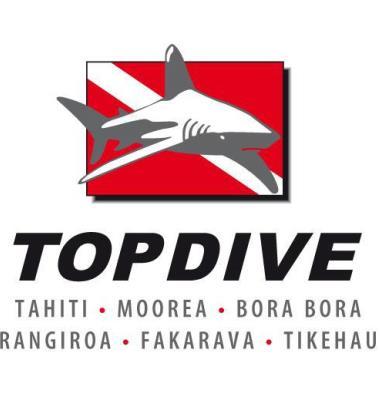 Top Dive