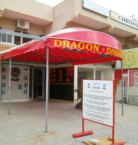 Dragon Divers