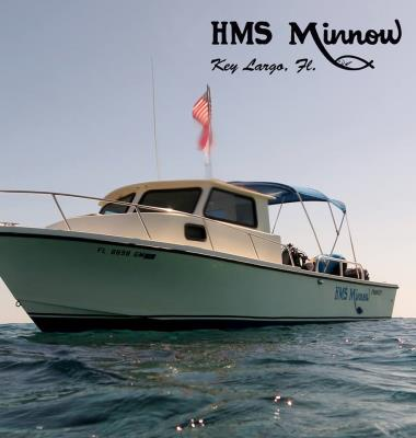 HMS Minnow Dive Charters