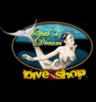 Opals Dream Dive Shop