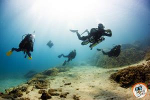 Guided Dive at Amarandos cape, Skopelos, N.Sporades, Greece