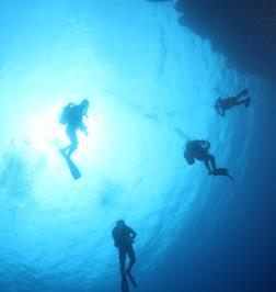 Panorama Divers