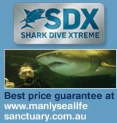 Shark Dive Xtreme