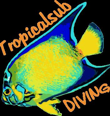 Tropicalsub Diving