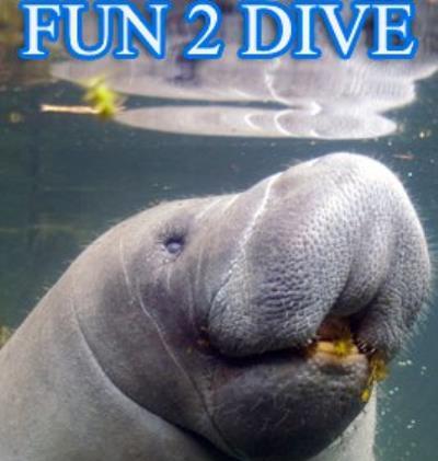Fun 2 Dive Scuba