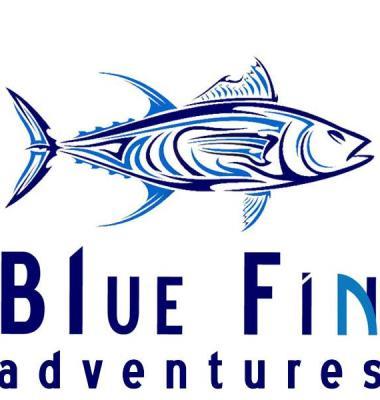 Blue Fin Adventures