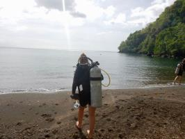 Caribbean Diving experience