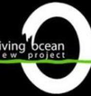 Diving Ocean (Marsa Alam)