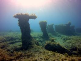 Istos Reef, Xylofagou