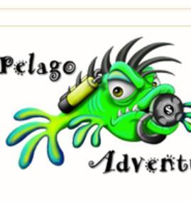 Pelago Adventure Centre