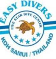 Easy Divers (Big Buddha)