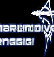 Blue Marlin Dive (Senggigi)
