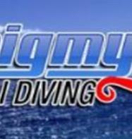 Pigmy Bali Diving