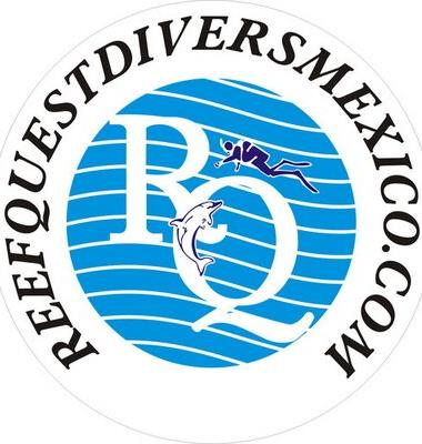 Reef Quest Divers