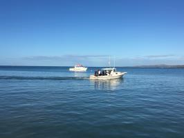 Playa Santa Boat Dive