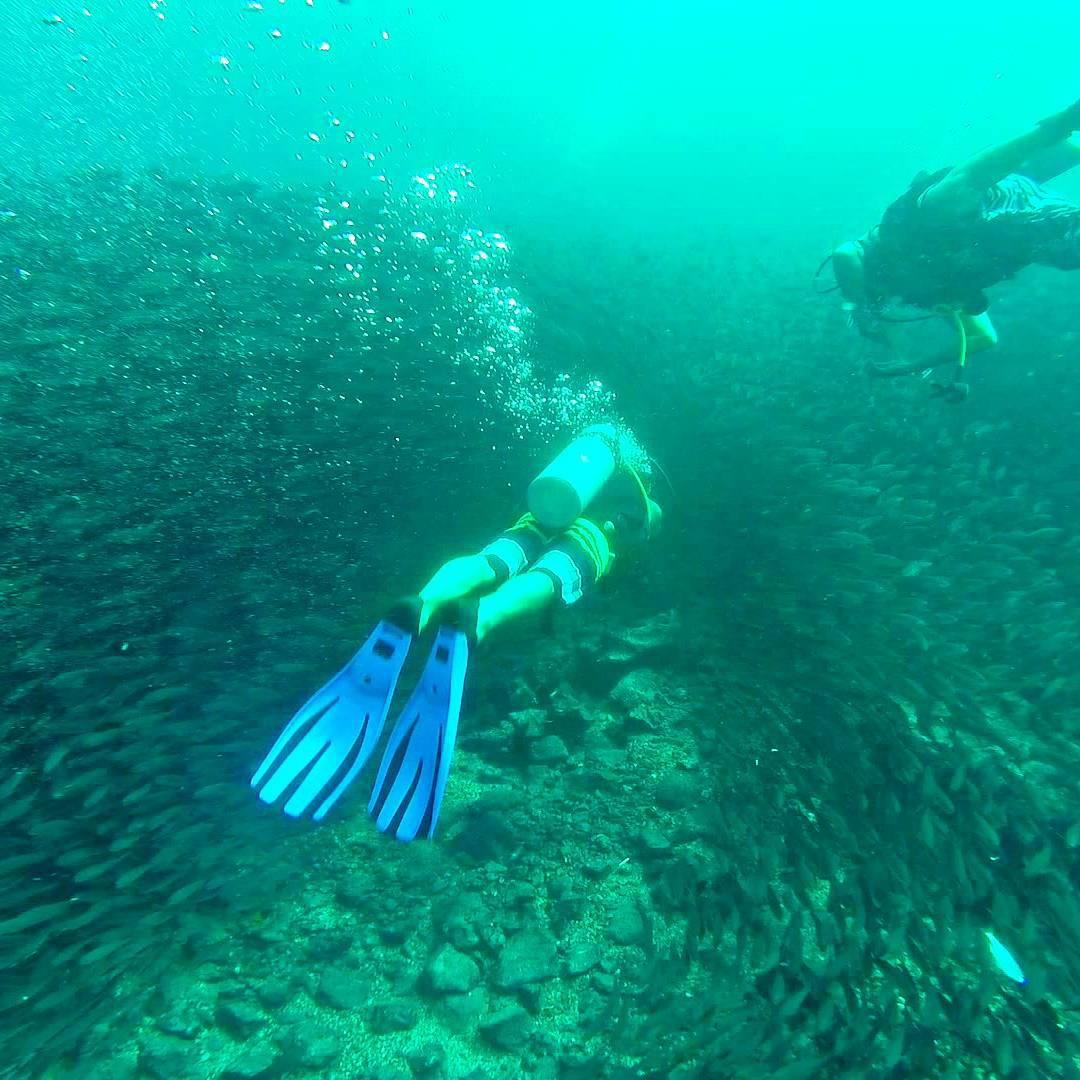 Buceo en isla Santa Cruz bajo isla mosquera